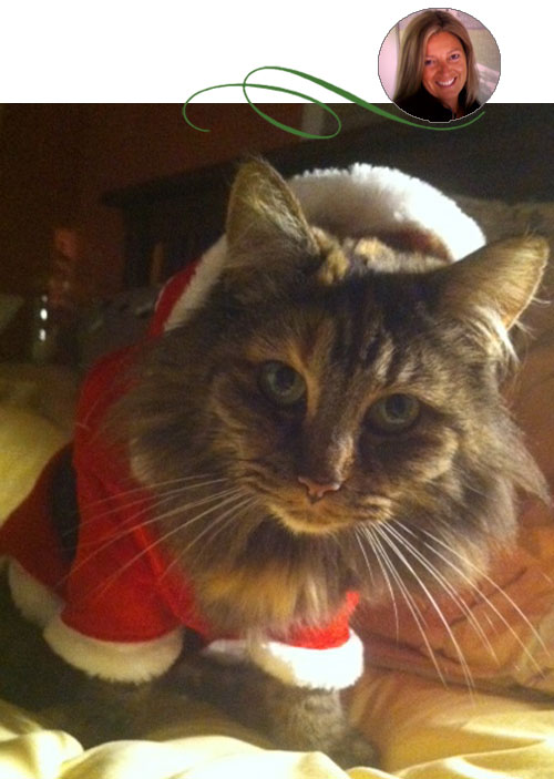 Meowy_Christmas_Blog